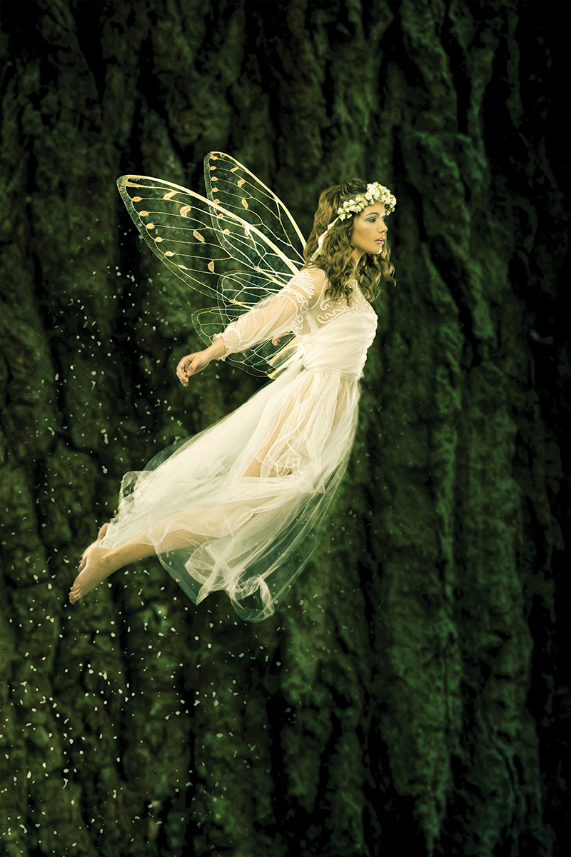 Fairy HD Quality Wallpaper | Dreamicus Dream Book