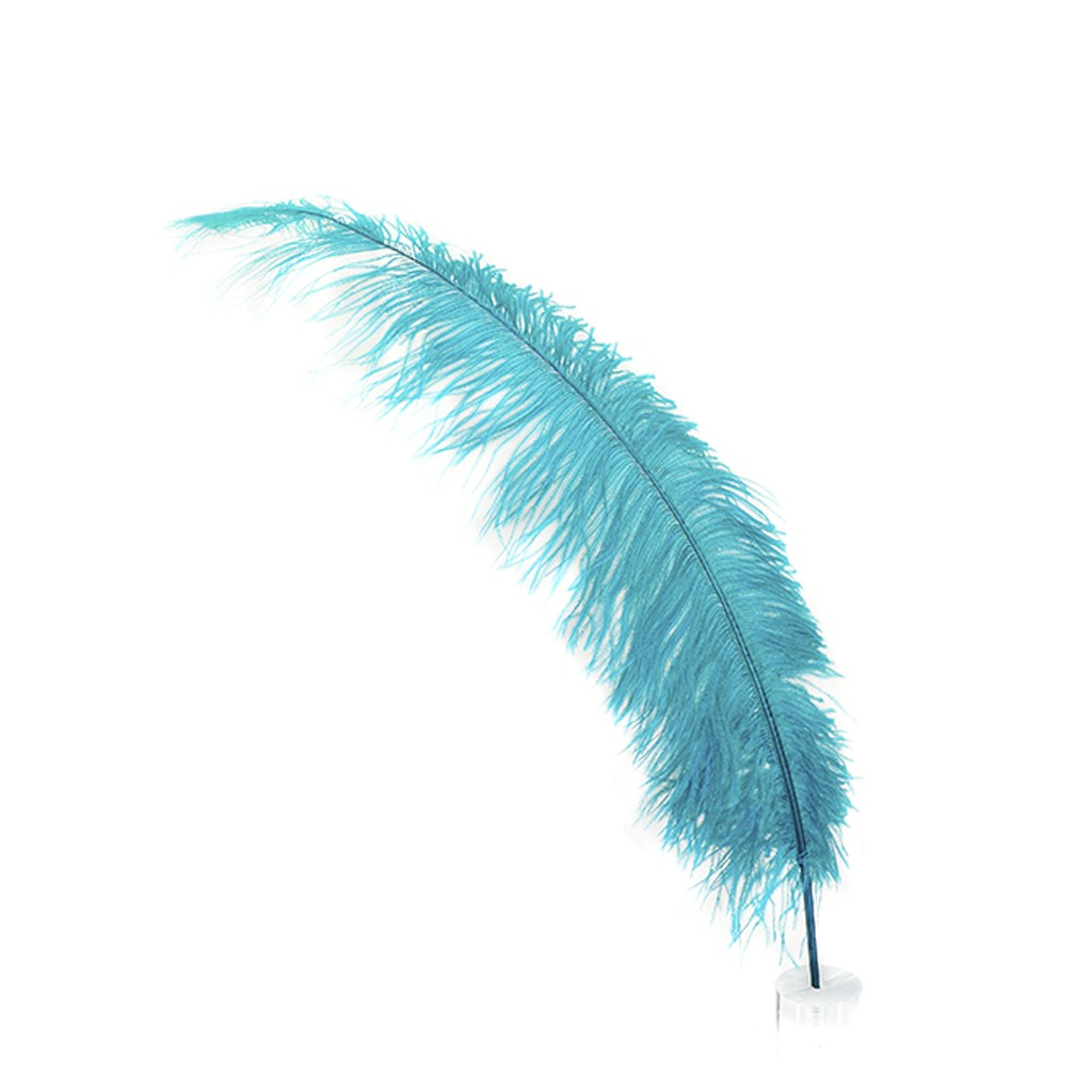 Feather, ID: GWB1171, Miguel Luk #03