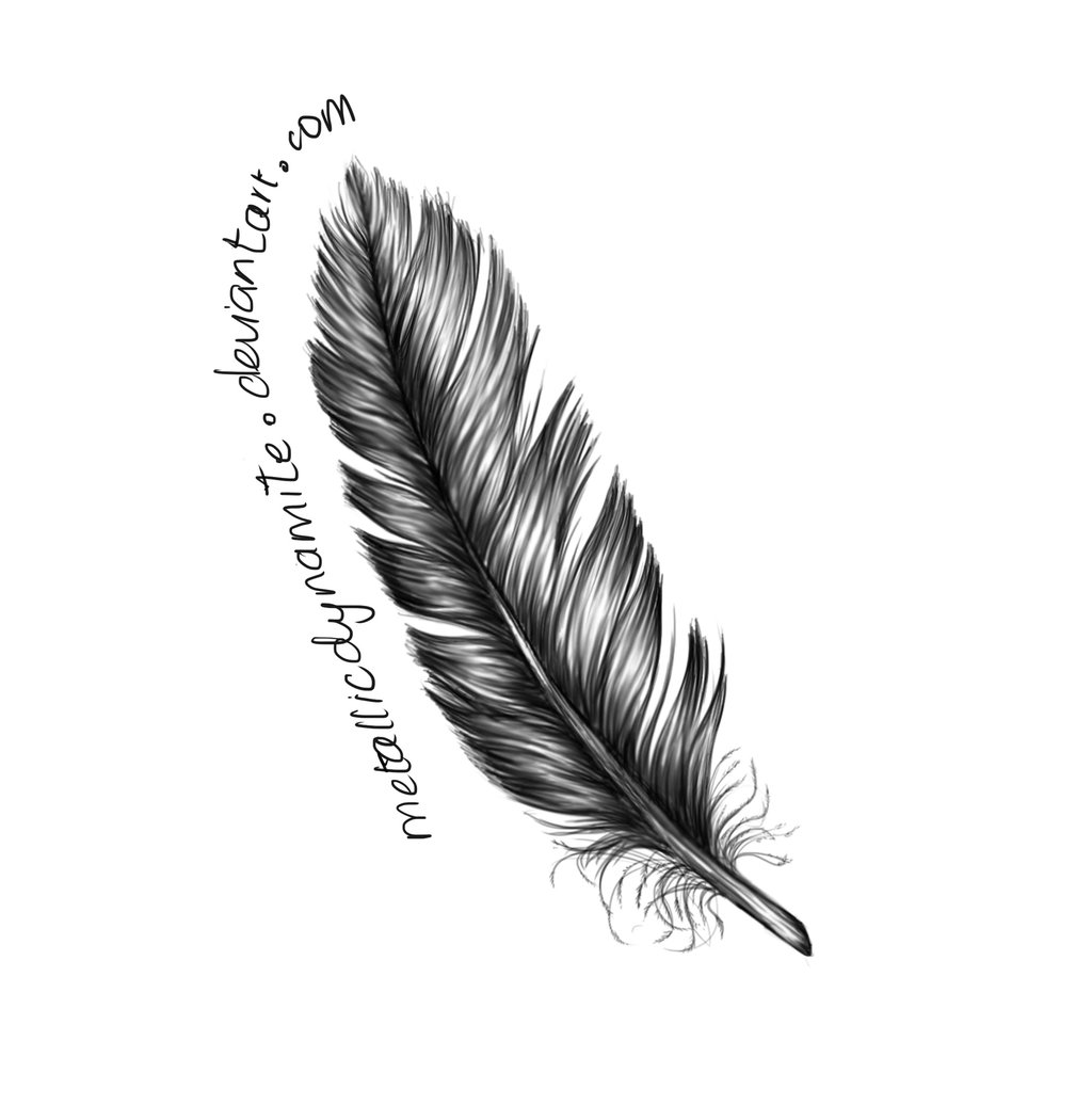 The meaning and symbolism of the word - Feather