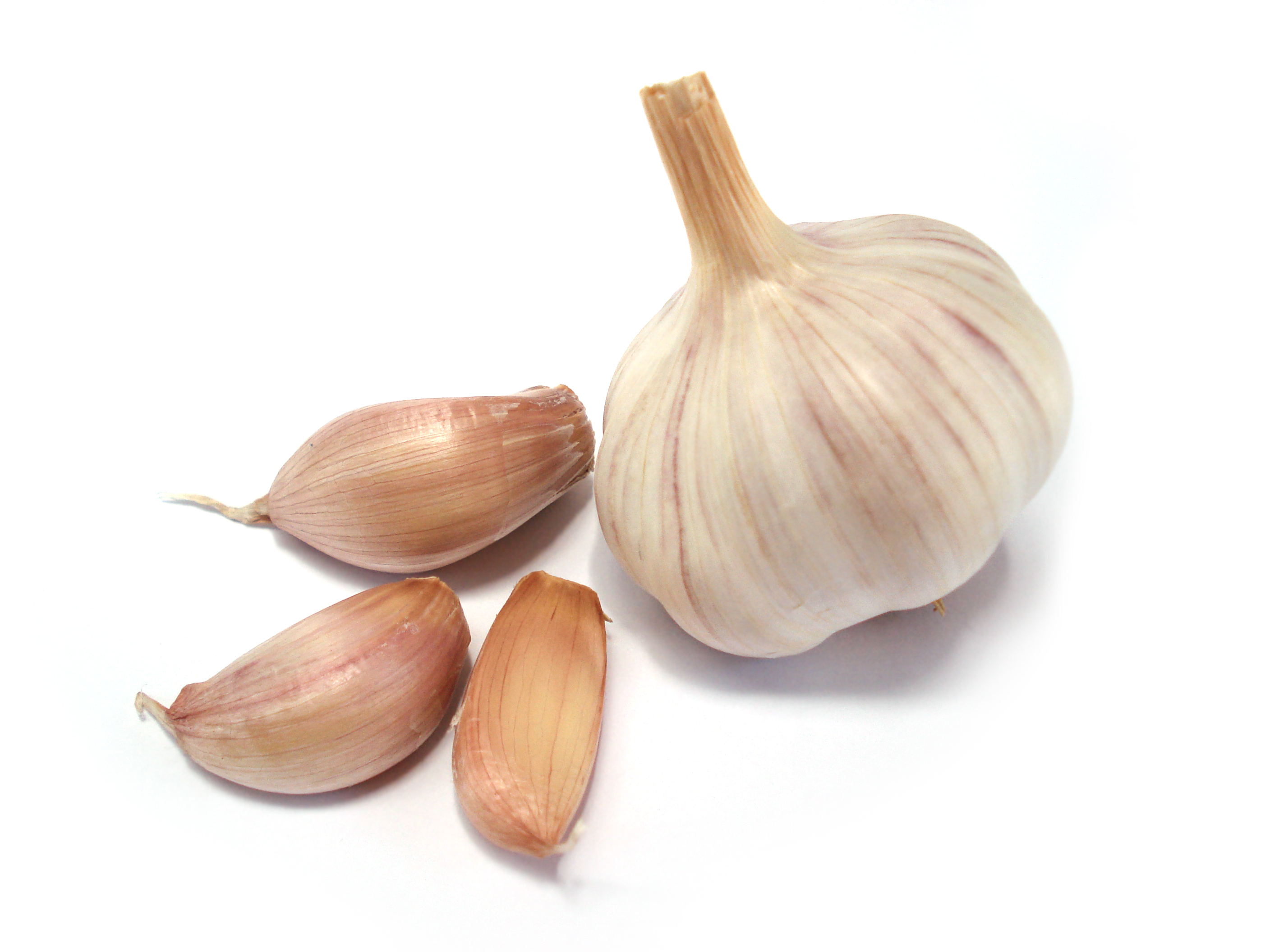 Cool Dream Definition Garlic - Dreamicus