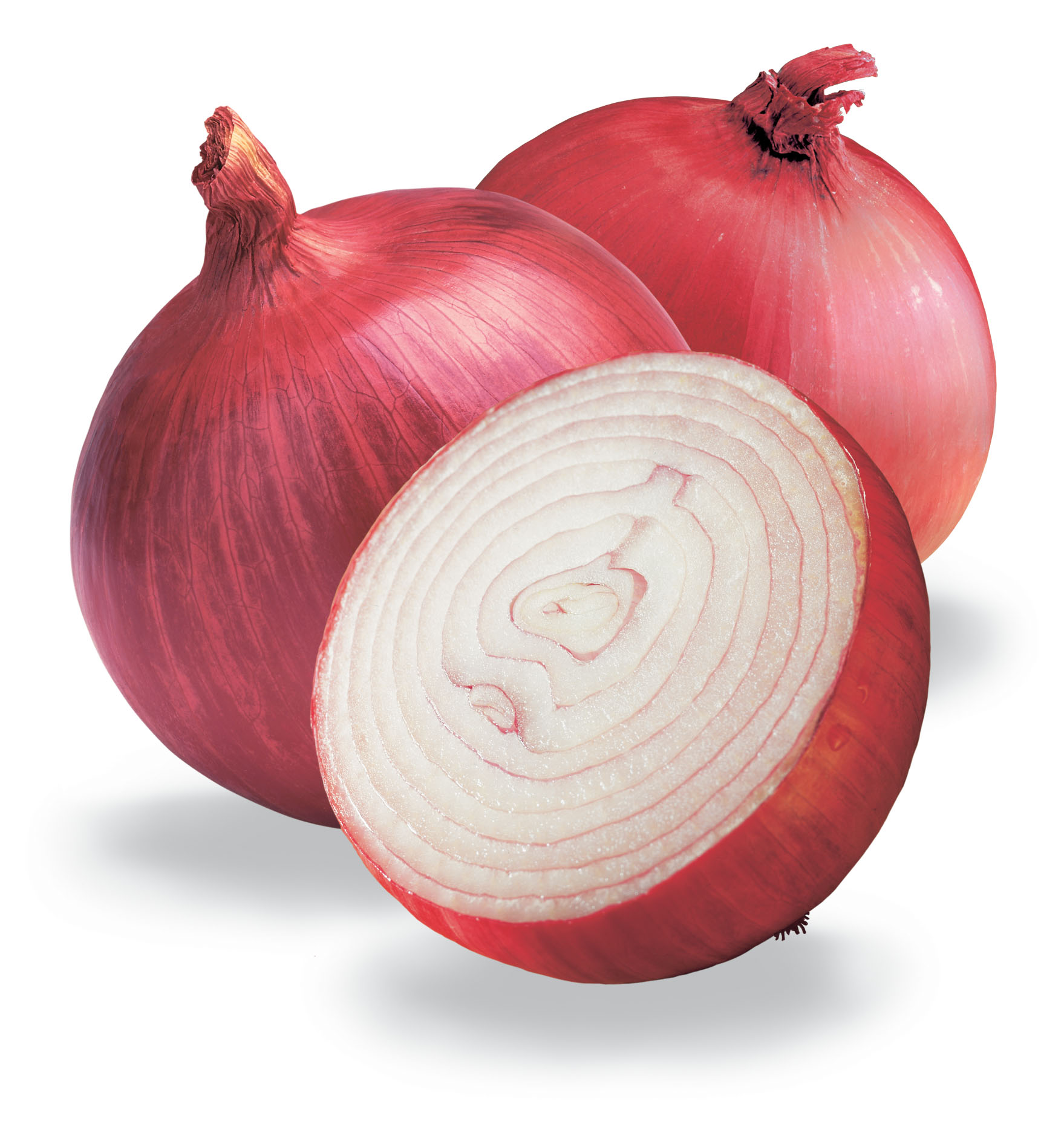 Onion HQ Definition Picture | Dreamicus Dream Book