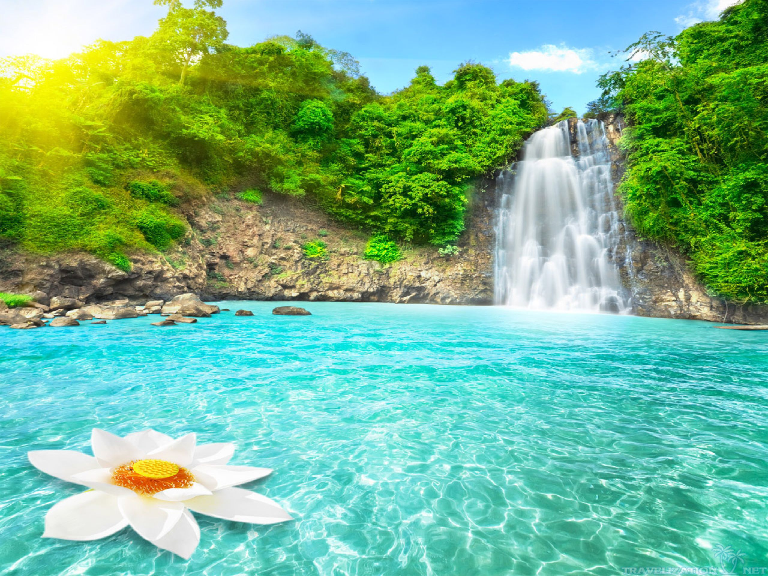 Paradise Full Resolution Background | Dreamicus