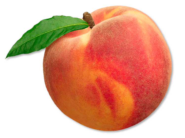 Peach Dream Definition by Eduardo Gomer, 84YJDG